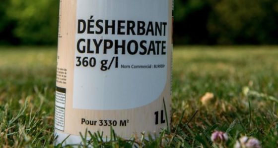 Olivier BECHT réaffirme son engagement vis à vis de l'interdiction du glyphosate